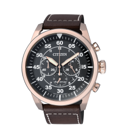 Watch Citizen Aviator